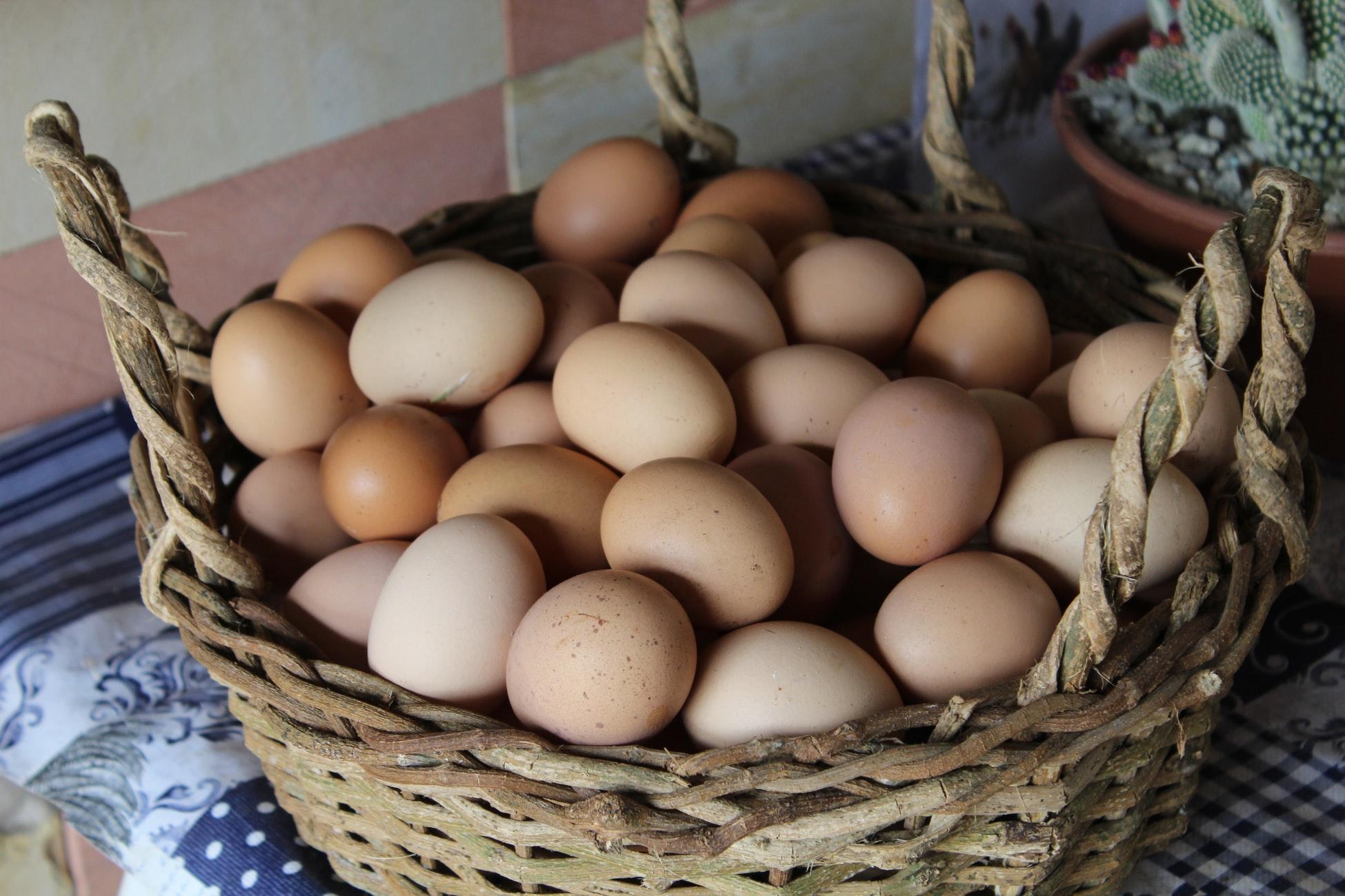 ワイ筋トレ民、プロテインの不味さに絶望し卵を食べていくことを決意